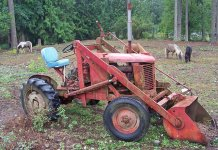 Same tractor but when he still had shetland ponies.jpg